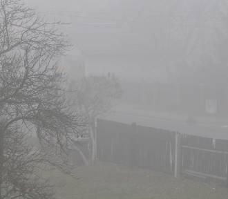 Od rana kierowcy zmagają się z gęstą mgłą