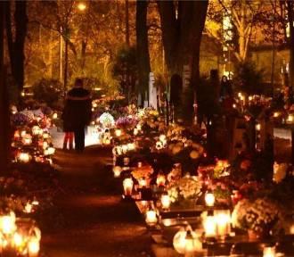 W zimowej kurtce na cmentarz? Sprawdź prognozę na Wszystkich Świętych