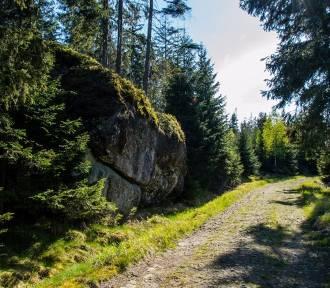 Park Narodowy Gór Stołowych świętuje 28. urodziny. Zobacz, jak tam pięknie!