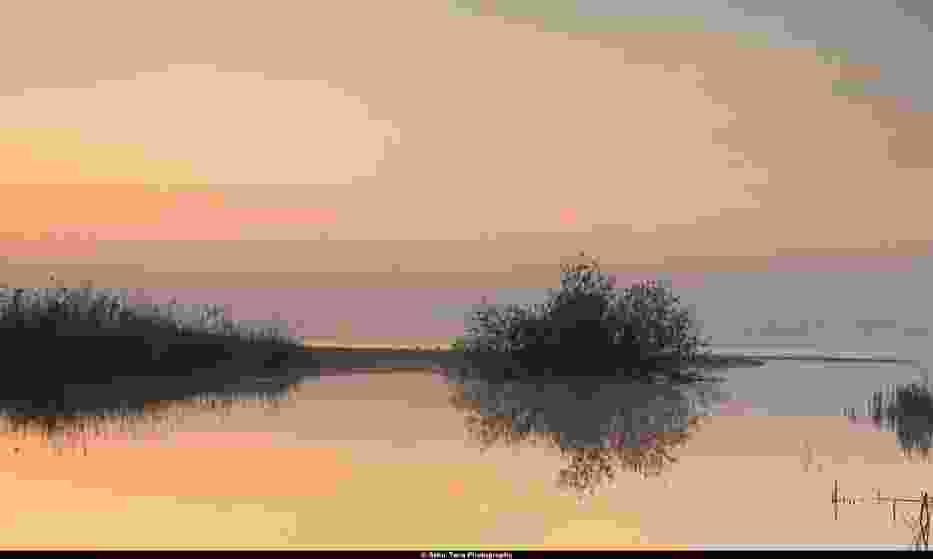 Ujście rzeki Redy do morza