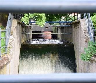 PWiK Malbork pozyskało dofinansowanie na inwestycje kanalizacyjne i wodociągowe