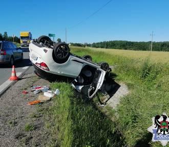 Wypadek w Wałbrzychu. Szerszeń wleciał do auta, kobieta wpadła w panikę!