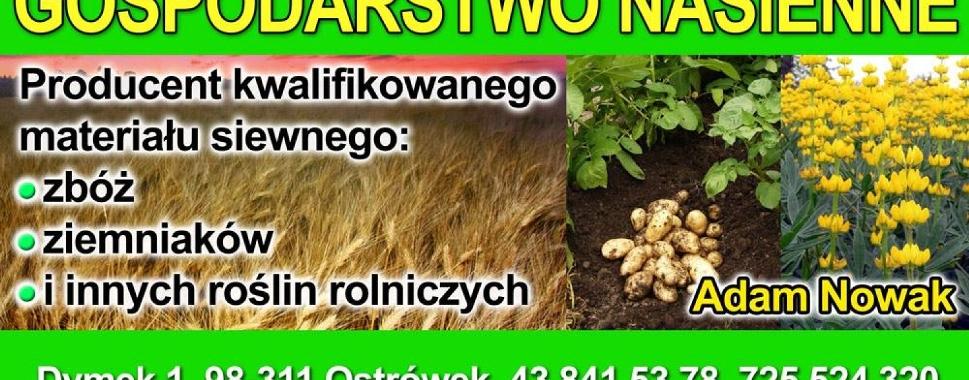 Gospodarstwo Nasienne Adam Nowak
