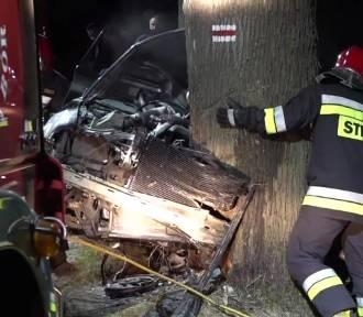 Radny: trzeba wyciąć drzewa przy drogach, będzie mniej wypadków, zacznę w tej sprawie rozmowy