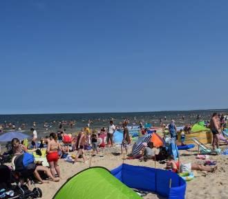 Plaża w Sobieszewie wypełniona... parawanami! To kąpielisko bez sinic [ZDJĘCIA]