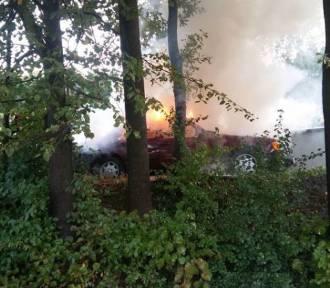 Podpalił auto z butlą gazową w kabinie [ZDJĘCIA]
