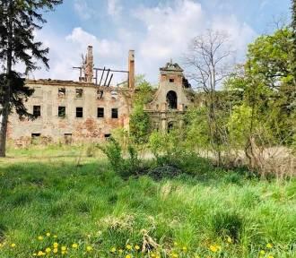 Barokowy pałac w Daszowie stał się ruiną [ZDJĘCIA]