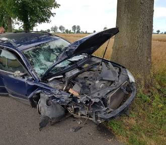 Gmina Nowy Staw. Samochód osobowy uderzył w dwa drzewa [ZDJĘCIA]