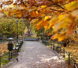 Pogoda na sobotę, 16 listopada