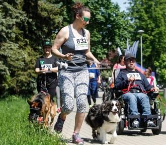 Rzeszów Run Hau. Bieg z psami dla... psów [FOTO]