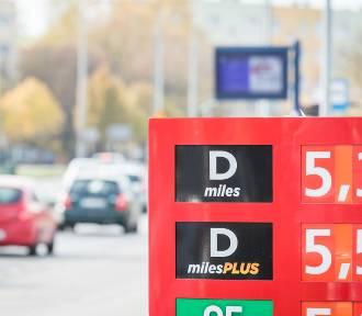 """Dolny Śląsk. Najchętniej jeździmy autami na """"ropę"""". Dlaczego? (RAPORT)"""