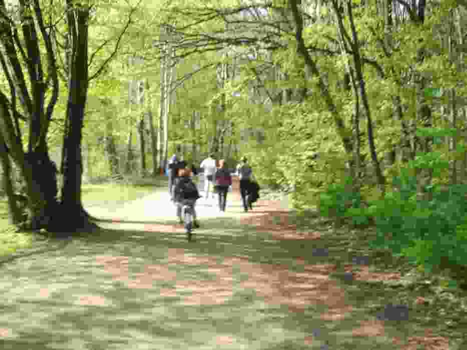 Jezioro Rusałka - miejsce na wielkanocny spacer w Poznaniu