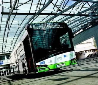 Trwa głosowanie na nazwy miejskich autobusów elektrycznych