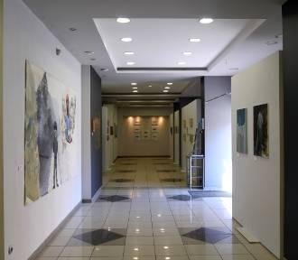 Galeria Sztuki otwiera sale dla odwiedzających. Co proponuje i jakie zasady będą obowiązywały?