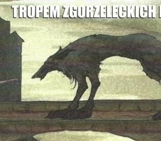 Tropem legend- wycieczka po Goerlitz inna niż wszystkie