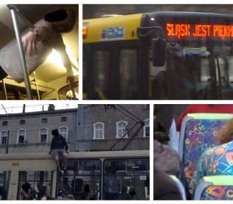 KZK GOP... potrafi zaskoczyć! TAKIE rzeczy dzieją się w autobusach na Śląsku [ZDJĘCIA]