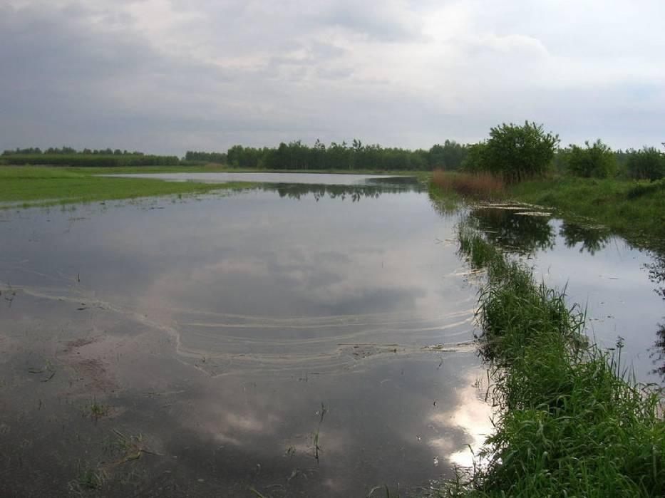 Od godziny 20 do 2 w nocy spadło 140 mm wody na metr kwadratowy