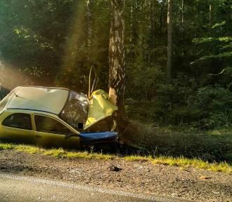 Powiat bełchatowski. Samochód uderzył w drzewo. Kierowca był pijany
