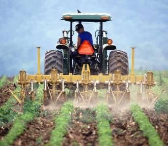Rolnictwo. Ruszył nabór wniosków na pomoc przy modernizacji gospodarstw