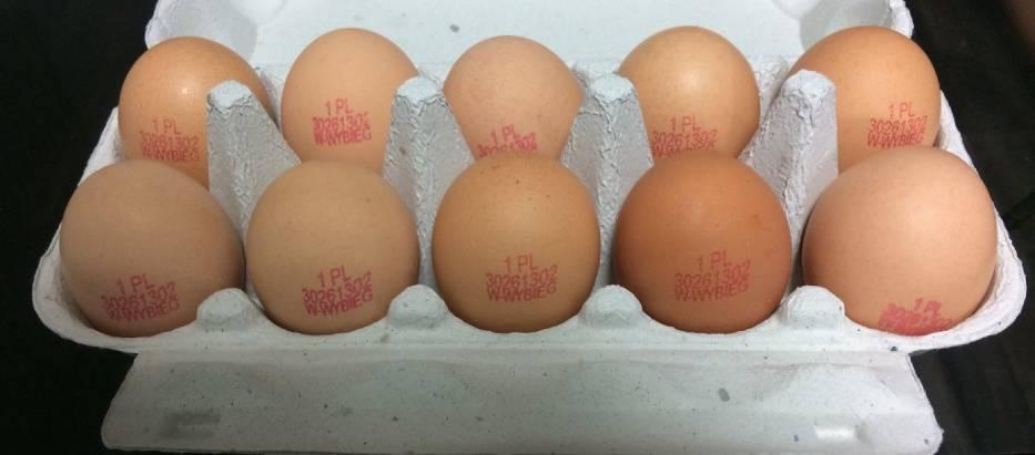 Jajka dużego producenta wycofywane są ze sklepów
