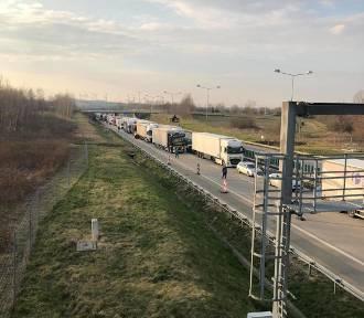 Ponad 40 tys. ton śmieci trafi z Niemiec do Polski. Będą składowane na Dolnym Śląsku