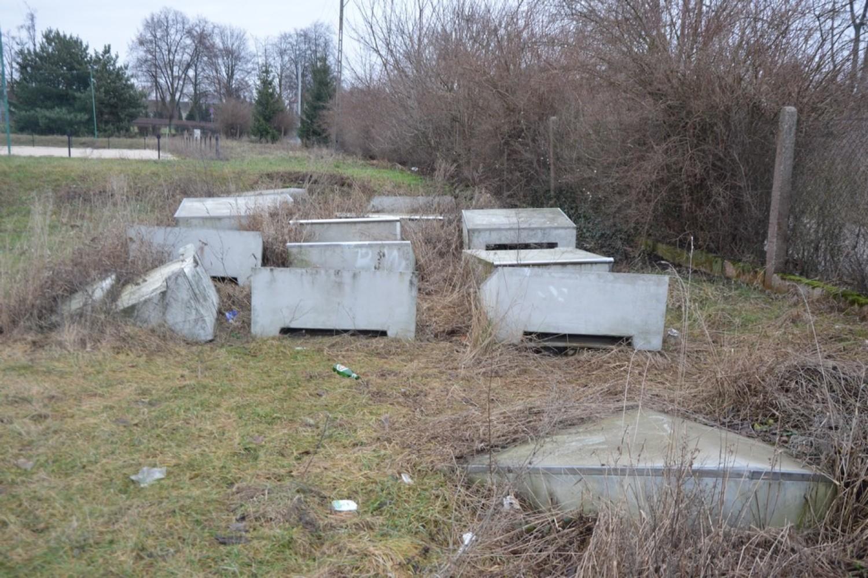Czternaście betonowych elementów skateparku zarosły chwasty