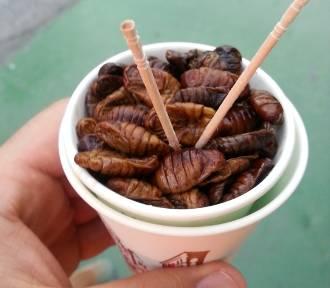 Stuletnie jaja, larwy jedwabnika i bycze jądra - najdziwniejsze potrawy z warszawskich restauracji