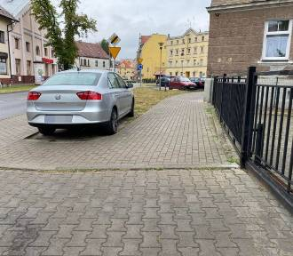 Mistrzowie parkowania 2020. Zobacz przegląd najciekawszych przypadków