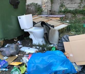 Burmistrz Krosna Odrzańskiego wydał wojnę śmieciarzom, po tym co zobaczył (ZDJĘCIA)