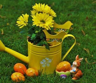 Przepiękne stroiki na Wielkanoc. Zobacz, zainspiruj się i udekoruj dom na święta! [ZDJĘCIA]
