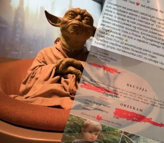 Uwaga fani Star Wars. W Polsce nadali dziecku imię...Yoda