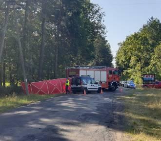 Samochód uderzył w drzewo, cztery młode osoby nie żyją