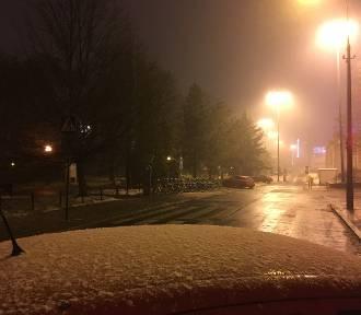 Pogoda w Łodzi i regionie. Spadł pierwszy śnieg [ZDJĘCIA]