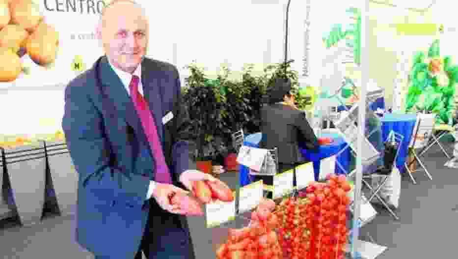 Pomidor odmiany Cornabel, wyglądem przypominający paprykę, okazał się hitem XI Krajowych Dni Ogrodnika