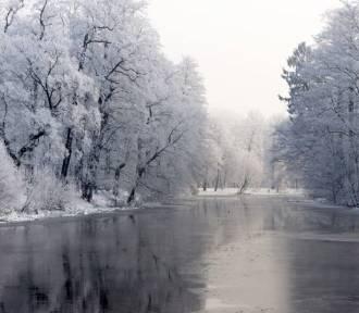 Czy zima będzie mroźna? Synoptycy IMGW przygotowali długoterminową prognozę pogody