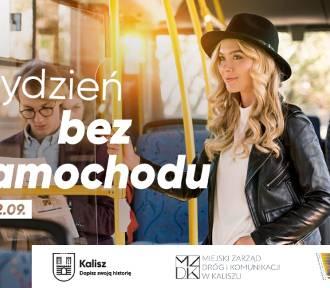 Tydzień bez samochodu w Kaliszu. Mieszkańcy będą mogli jeździć autobusami KLA bezpłatnie