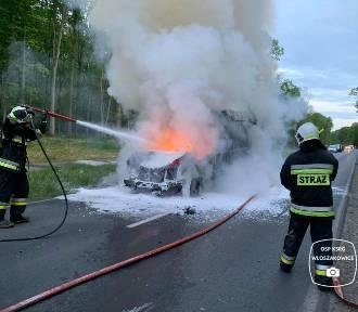 Pożar busa po zderzeniu z jeleniem pod Włoszakowicami [ZDJĘCIA]