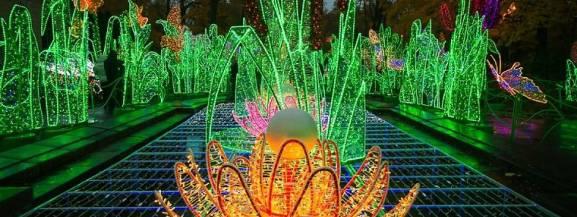 Warto wybrać się na spacer do Wilanowa. Wieczorami zobaczymy ułożone ze świateł barokowe rośliny, niezwykłe pokazy łączące światło z muzyką klasyczną oraz królewską karocę zaprzężoną w sześć koni. Trójwymiarowe pokazy łączą w sobie światło, dźwięk i obraz, a pod ich wpływem poszczególne elementy dekoracji ożywają. Wstęp na Królewski Ogród Światła jest darmowy. Można go oglądać do 12 marca.