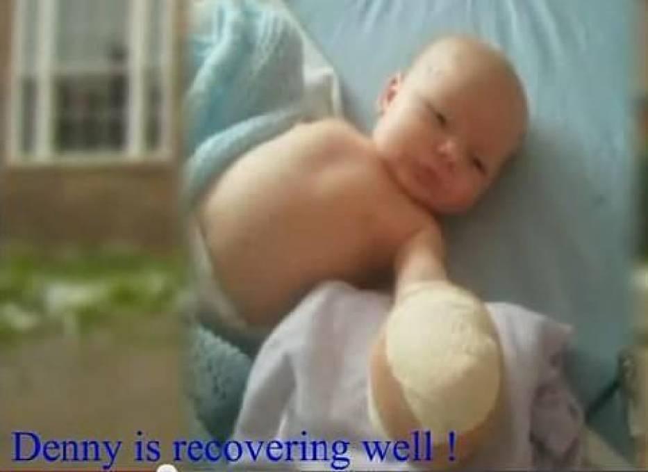 Dany, uratowany z lisiej paszczy w szpitalu po zabiegu chirurgicznym