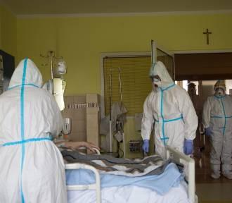 Koronawirus nie odpuszcza. Wciąż dużo zgonów. Ile nowych zakażeń w Śląskiem?