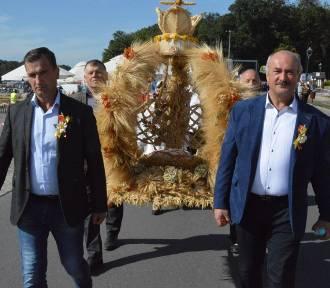Dożynki Województwa Łódzkiego Uniejów 2020. Zobacz jakie wieńce zostały przygotowane