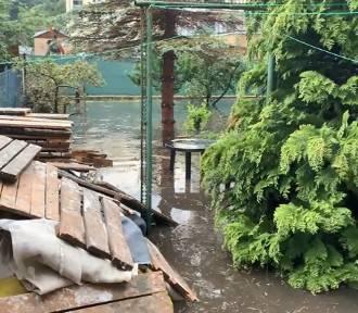Posesje przy Potoku Demptowskim zalewane, problem nie jest rozwiązany od lat