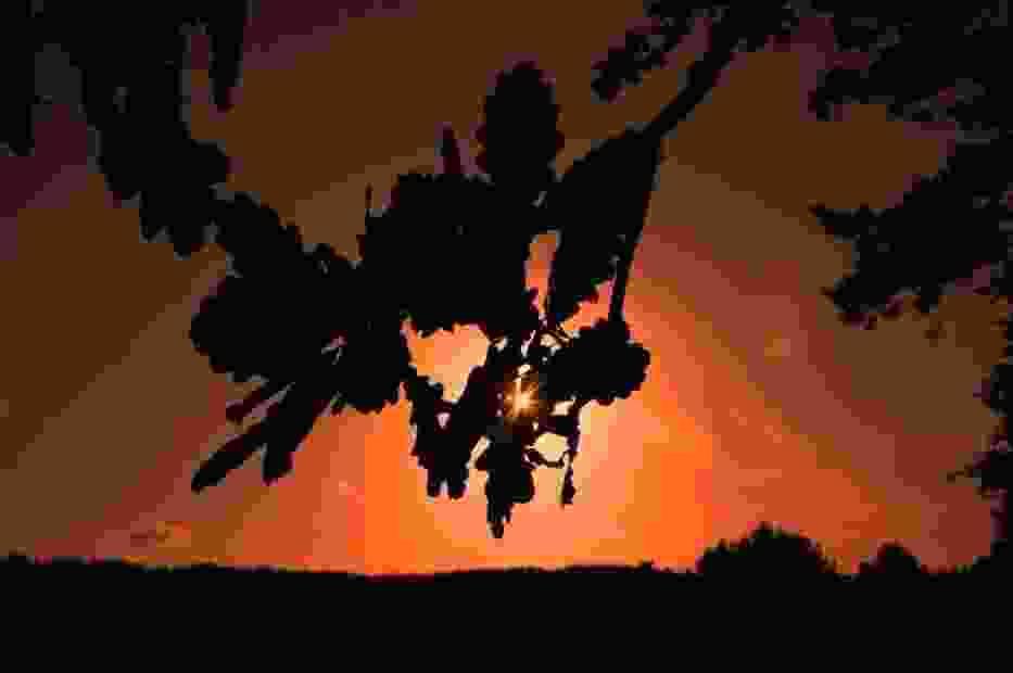 Zachód słońca fot