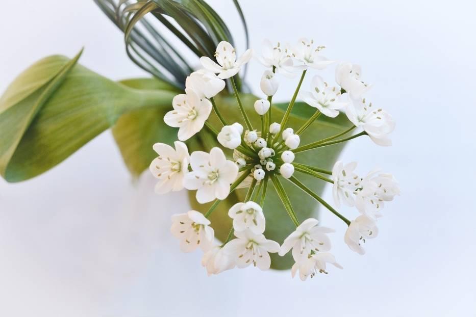Branża florystyczna