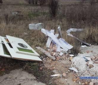 Dzikie wysypiska śmieci - sprawdź, komu i gdzie je zgłosić