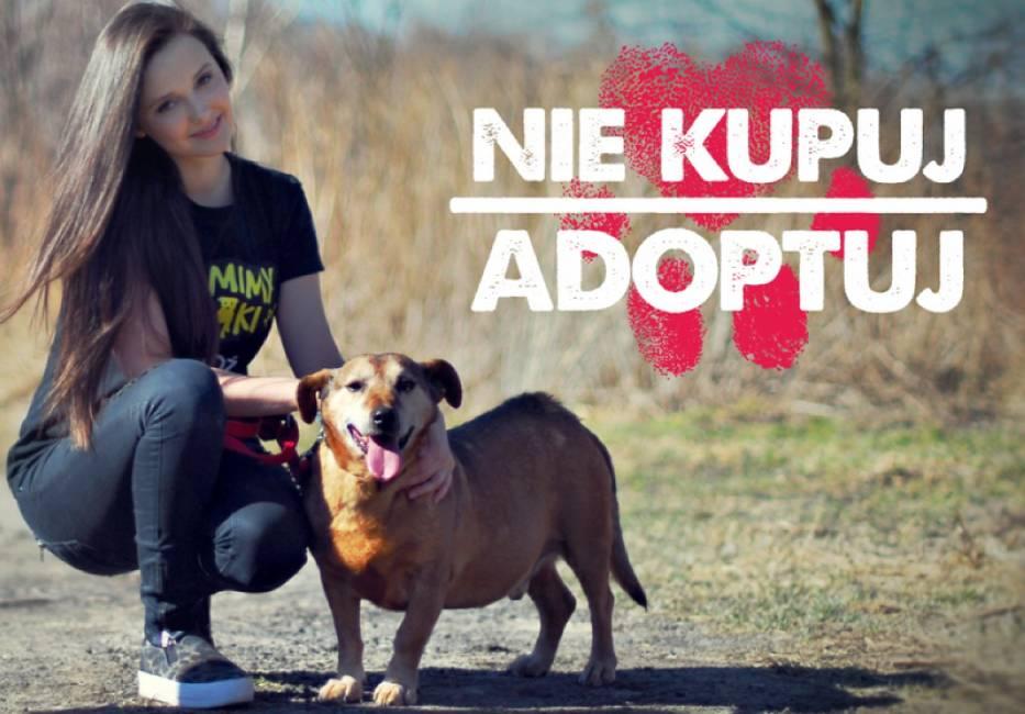 Karolina Ościk szuka domu dla czworonoga ze schroniska