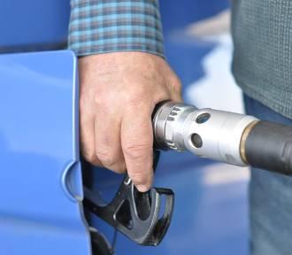 Ceny paliw na stacjach w regionie tydzień do tygodnia znów w górę