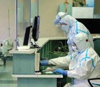COVID hamuje inne choroby. Ilu ludzi choruje na grypę, odrę, boreliozę?