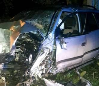 Wypadek w powiecie brodnickim. 21-latek kierujący mitsubishi uderzył w drzewo