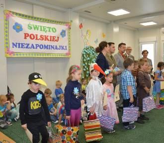 Święto Polskiej Niezapominajki w Przedszkolu nr 3 w Skierniewicach [ZDJĘCIA]